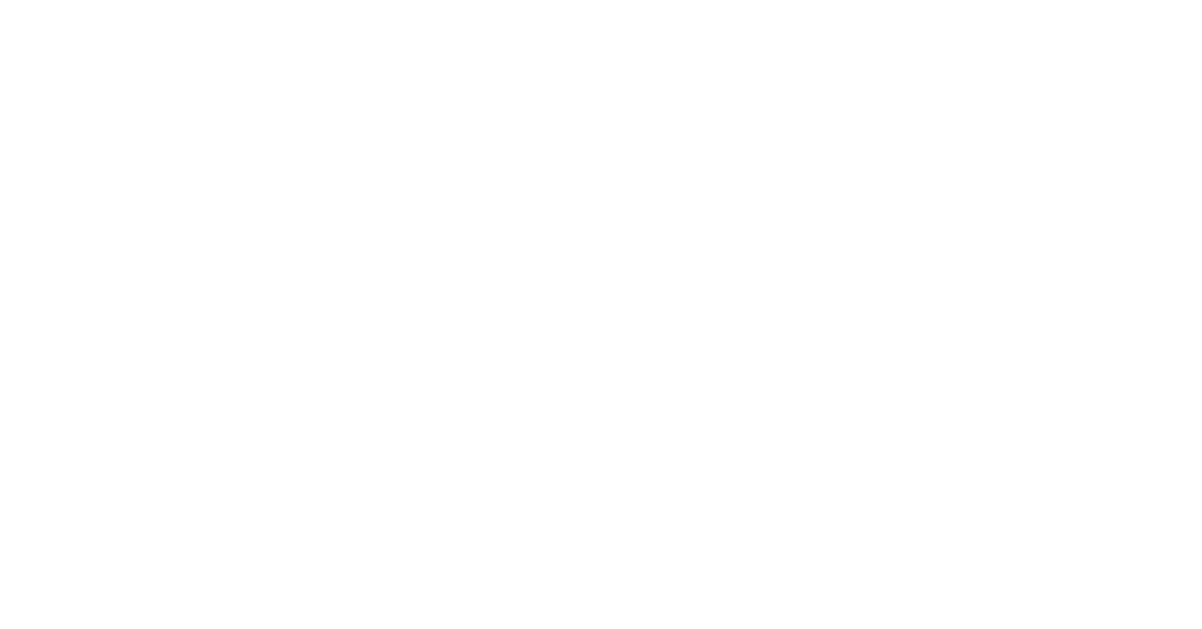 Arizona Inn Logo